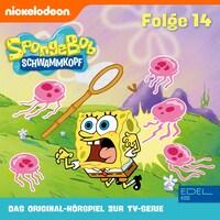Folge 14 (Das Original-Hörspiel zur TV-Serie)