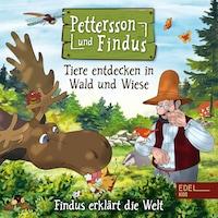 Findus erklärt die Welt: Tiere entdecken in Wald und Wiese (Das Original-Hörspiel zum Naturbuch)