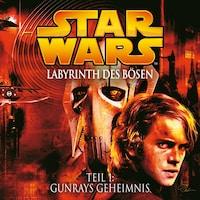 Labyrinth des Bösen - Teil 1: Gunrays Geheimnis