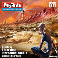 Perry Rhodan 2825: Unter dem Sternenbaldachin