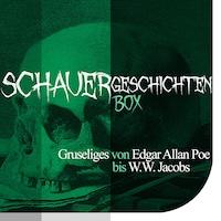 Die Schauergeschichten Box