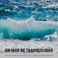 Un mar de tranquilidad: el suave murmullo del mar con una calidad de sonido excelente
