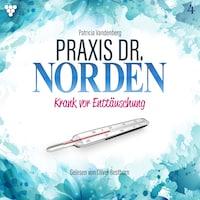 Praxis Dr. Norden 4 - Arztroman