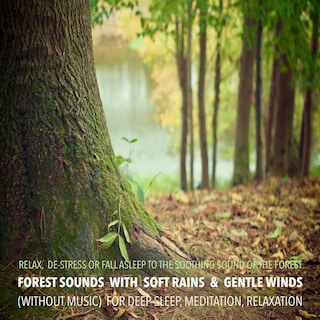 Forest Sounds with Soft Rains & Gentle Winds (without music) for Deep Sleep, Meditation, Relaxation