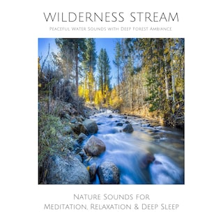 Wilderness Stream (without music) - Peaceful Water Sounds with Deep Forest Ambience