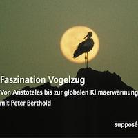 Faszination Vogelzug