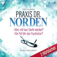 Praxis Dr. Norden 2 Hörbücher Nr. 4 - Arztroman