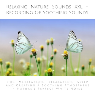 Relaxing Nature Sounds (without music) - Recording Of Soothing Nature Sounds