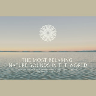 The Most Relaxing Nature Sounds In The World