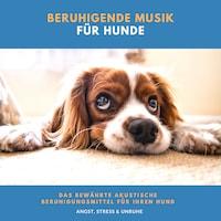 Beruhigende Musik für Hunde