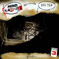 MindNapping, Folge 3: Der Trip