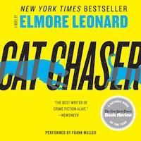 Cat Chaser