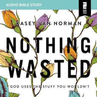 Nothing Wasted: Audio Bible Studies