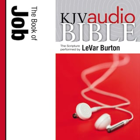 Pure Voice Audio Bible - King James Version, KJV: (15) Job