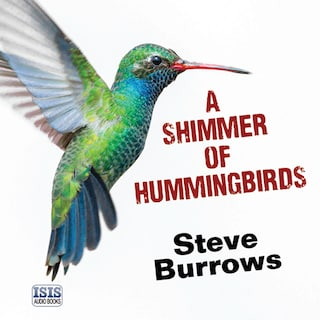 A Shimmer of Hummingbirds