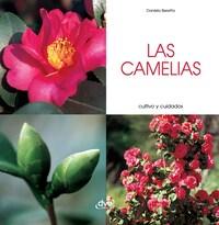 Las camelias - Cultivo y cuidados