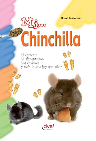 Mi... Chinchilla