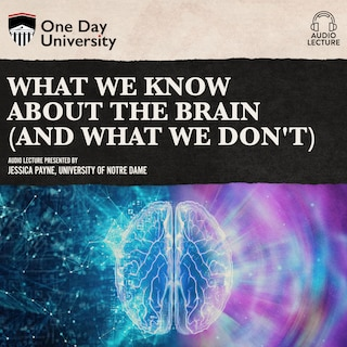 What We Know About the Brain (and What We Don't)