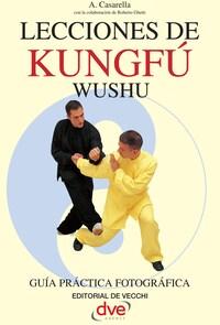 Lecciones de Kung Fu