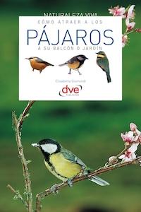 Cómo atraer a los pájaros a su balcón o jardín