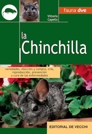 La Chinchilla