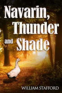 Navarin, Thunder and Shade