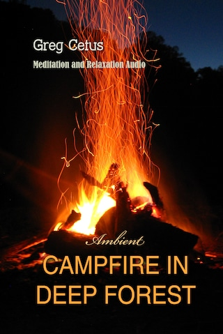 Campfire In Deep Forest: Meditation and Relaxation Audio