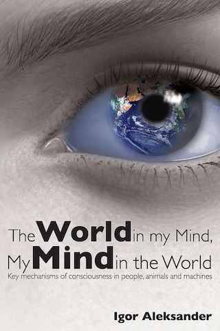 The World in My Mind, My Mind in the World