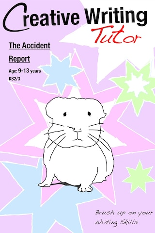 The Accident Report