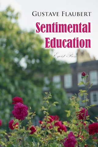 Sentimental Education: The History of a Young Man