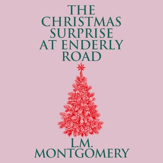 The Christmas Surprise at Enderly Road