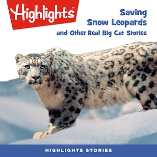 Saving Snow Leopards and Other Real Big Cat  Stories