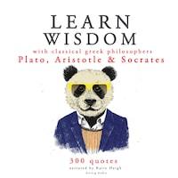 Learn wisdom with Classical Greek philosophers: Plato, Socrates, Aristotle