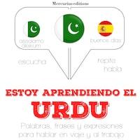 Estoy aprendiendo el Urdu