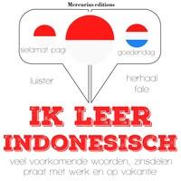 Ik leer Indonesisch