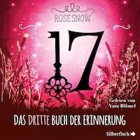 17 3: Das dritte Buch der Erinnerung