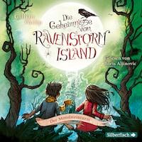 Die Geheimnisse von Ravenstorm Island  3: Der Mondsteinturm
