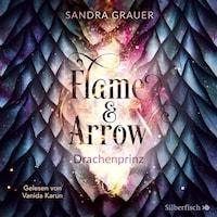 Flame & Arrow 1: Drachenprinz