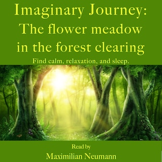 Imaginary Journey: The flower meadow in the forest clearing