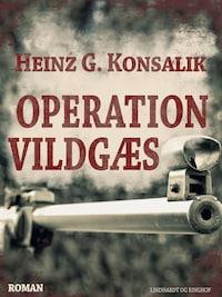 Operation Vildgæs