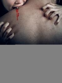 True Blood 8 - Død og pine