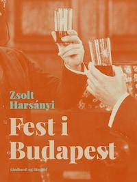 Fest i Budapest