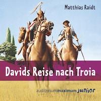 Davids Reise nach Troia (Ungekürzt)
