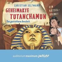 Geheimakte Tutanchamun - Das gestohlene Amulett. Ein Rätselkrimi