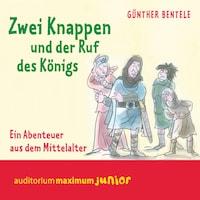 Zwei Knappen und der Ruf des Königs - Ein Abenteuer aus dem Mittelalter (Ungekürzt)