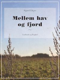 Mellem hav og fjord