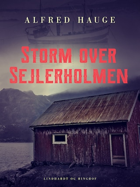Storm over Sejlerholmen
