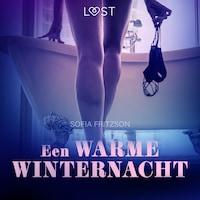 Een warme winternacht - erotisch verhaal