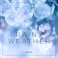 Ambience - Rainy Weather