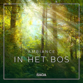 Ambiance - In het Bos